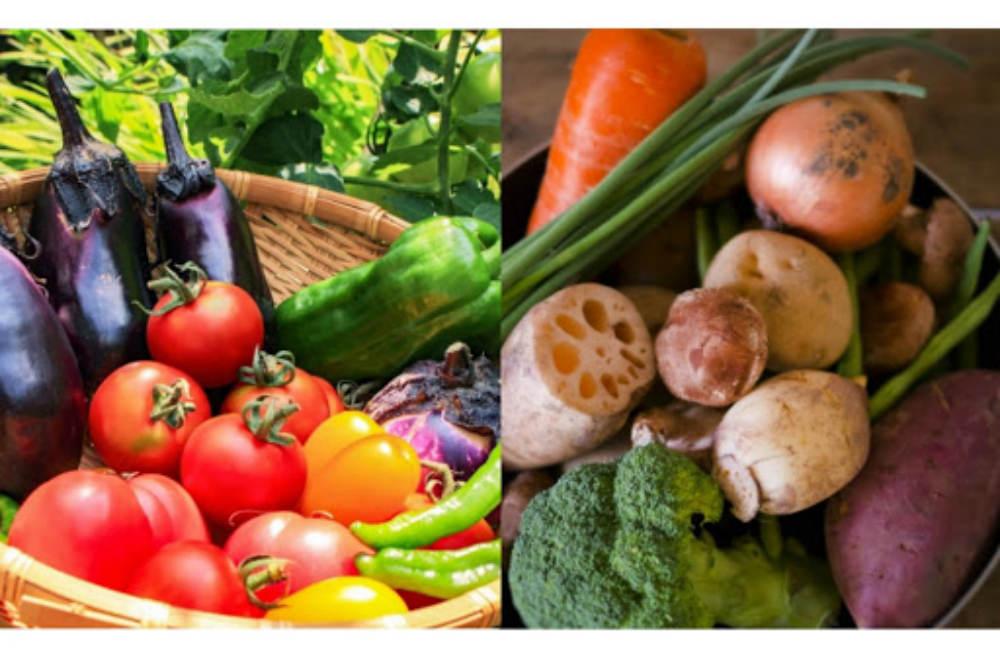 陰性の食べ物と陽性の食べ物