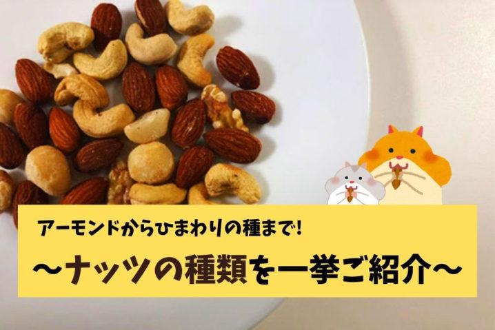 ナッツの種類